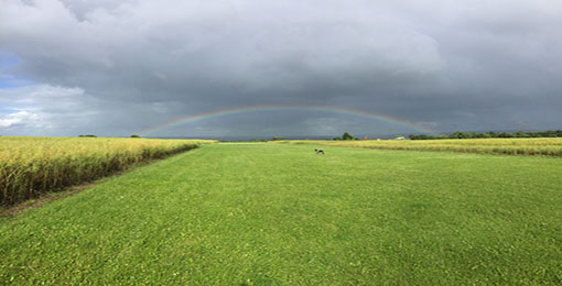 Runway at brown shutters airfield with a Rainbow